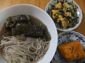 ナス素麺、葱玉、南瓜煮