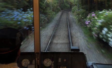 あじさい電車1