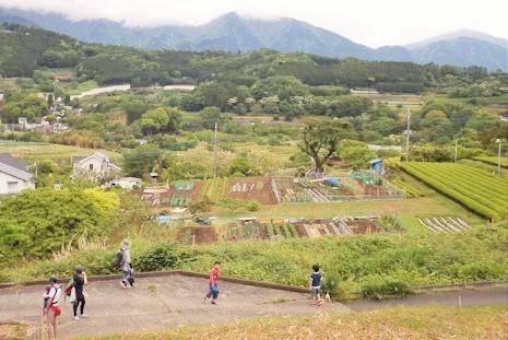 表丹沢を眺める絶景ポイント
