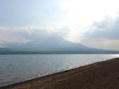 山中湖 長池親水公園