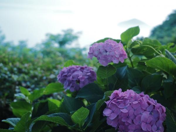 紫雲出山07