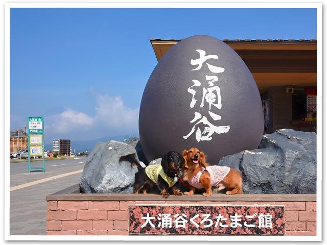 箱根ぷち旅行②