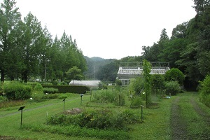 yakusouen1.jpg