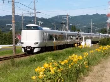 20170904ひまわりと電車2