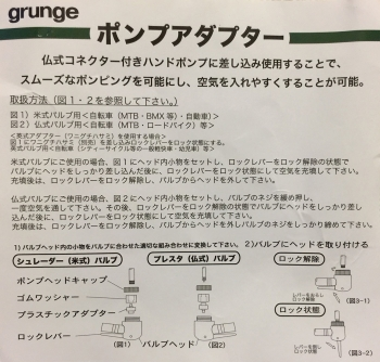 grungepumpadapterFig.jpg