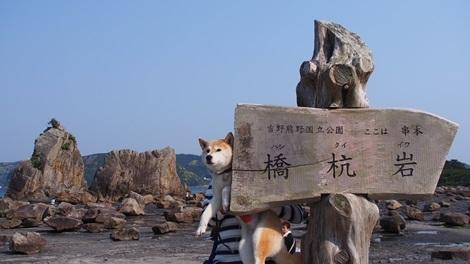 橋杭岩だよ