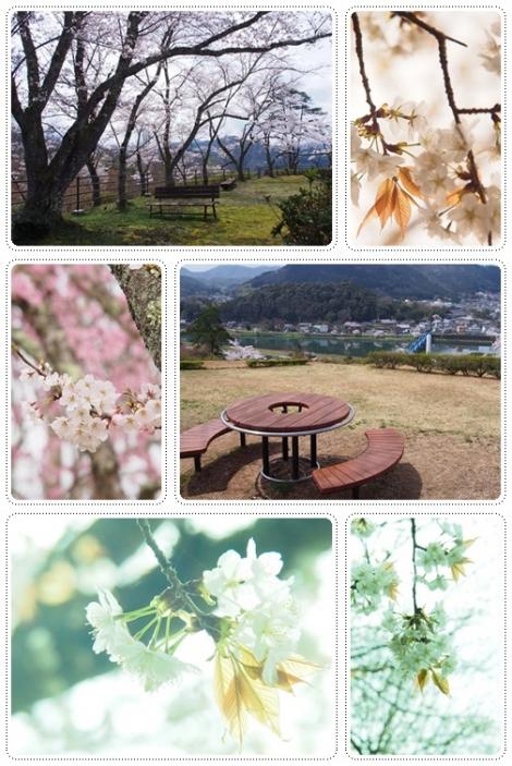 綾部の公園
