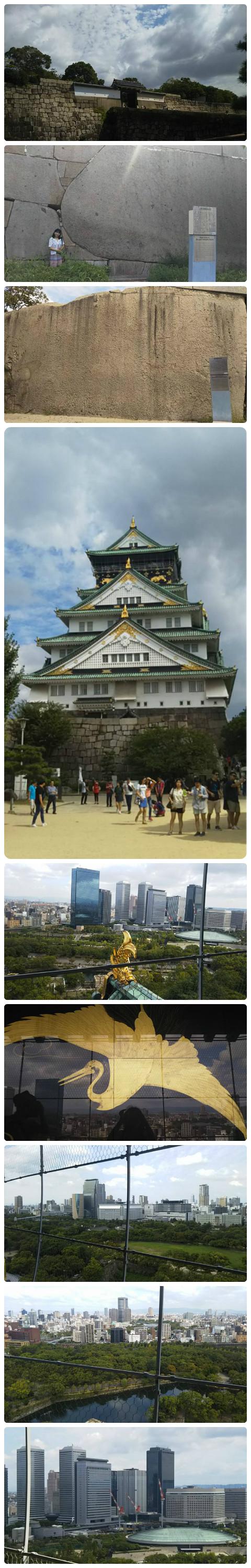 平成29年9月3日大阪城い