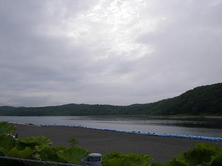 s-藻散布