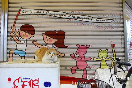 可愛いシャッターと猫