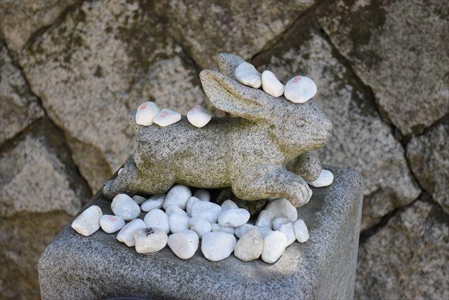 うさぎに石が ・・・