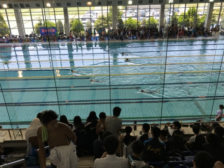 170617swim (1)