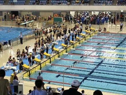 1706244swimming