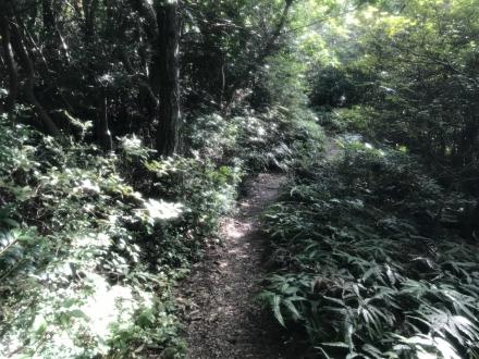 170914mirokusan trailrunning (1)