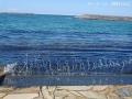 新湊の海岸2