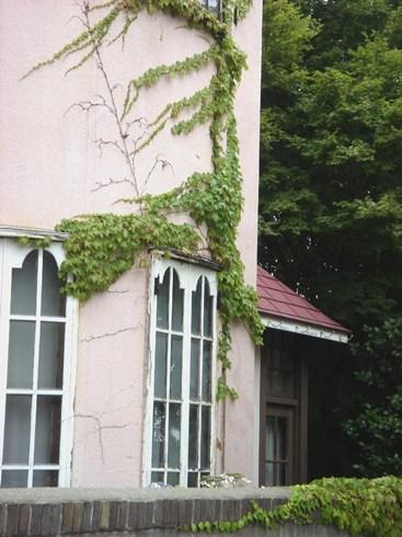 旧亀井邸(3)