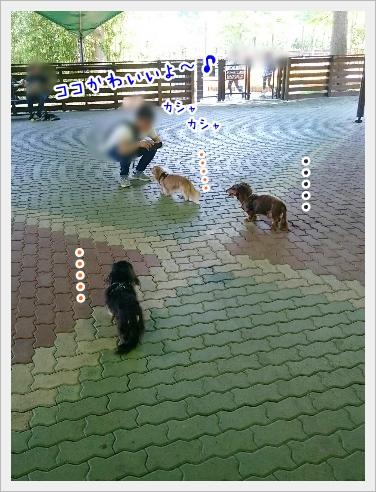 fc2_2017-05-22_06.jpg