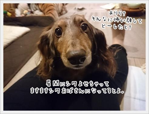 fc2_2017-06-16_01.jpg