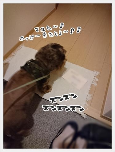 fc2_2017-06-20_03.jpg