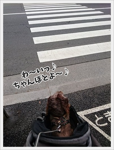 fc2_2017-06-26_02.jpg