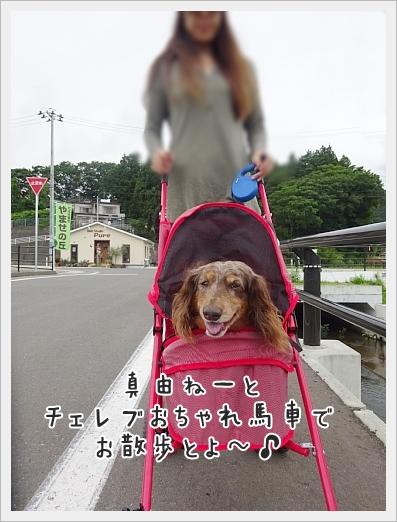 fc2_2017-08-29_01.jpg
