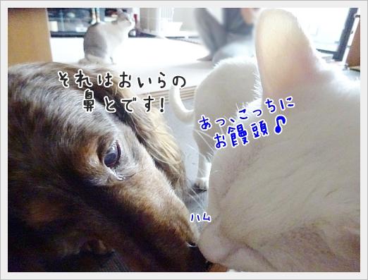 fc2_2017-09-07_08.jpg
