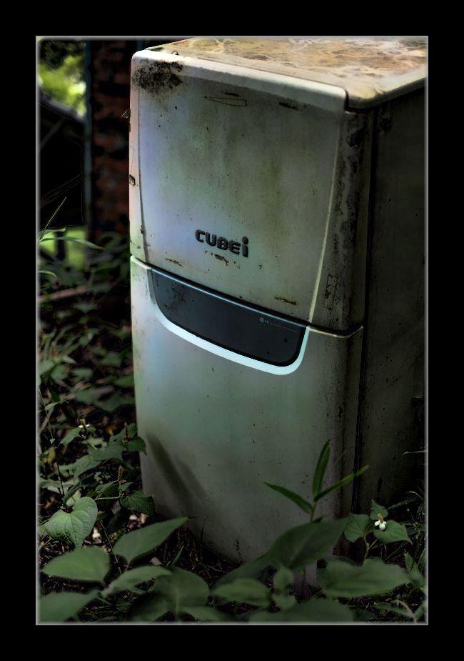冷蔵庫かな