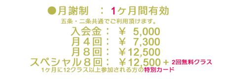 月謝制 RAVISTA二条スタジオの料金・クラス内容 京都市役所 寺町御池