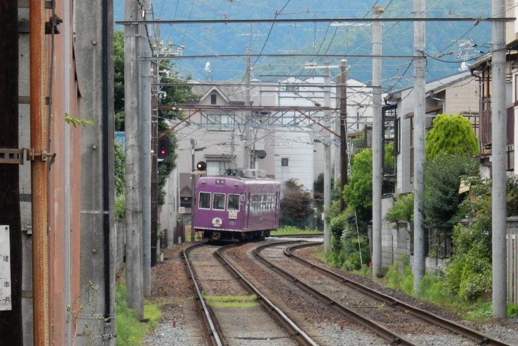 嵐電アジサイ 069