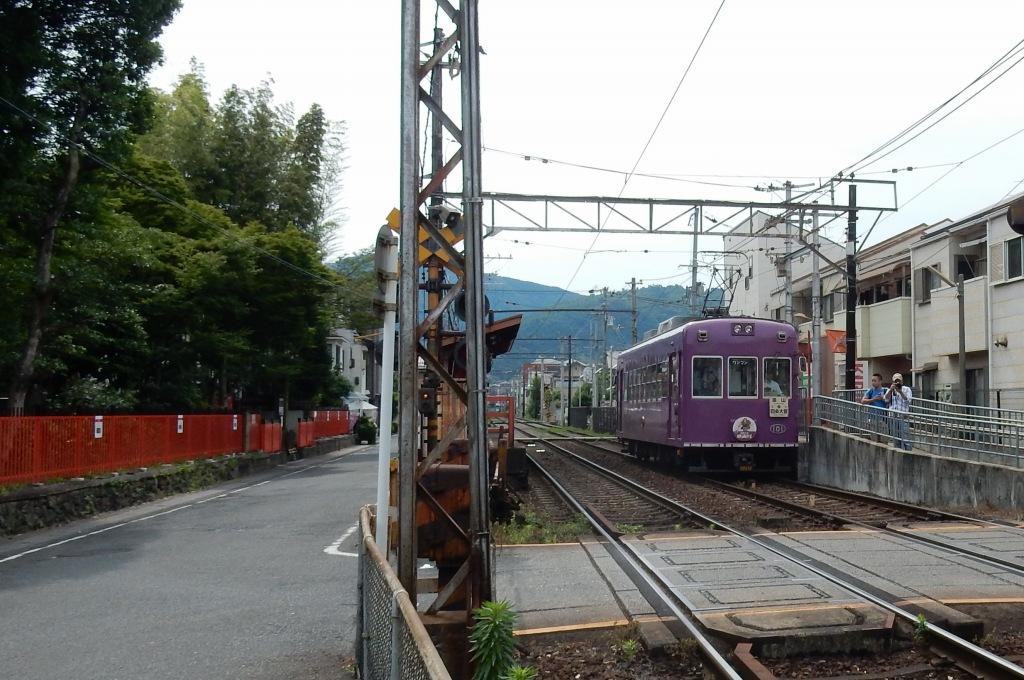 嵐電アジサイ 086