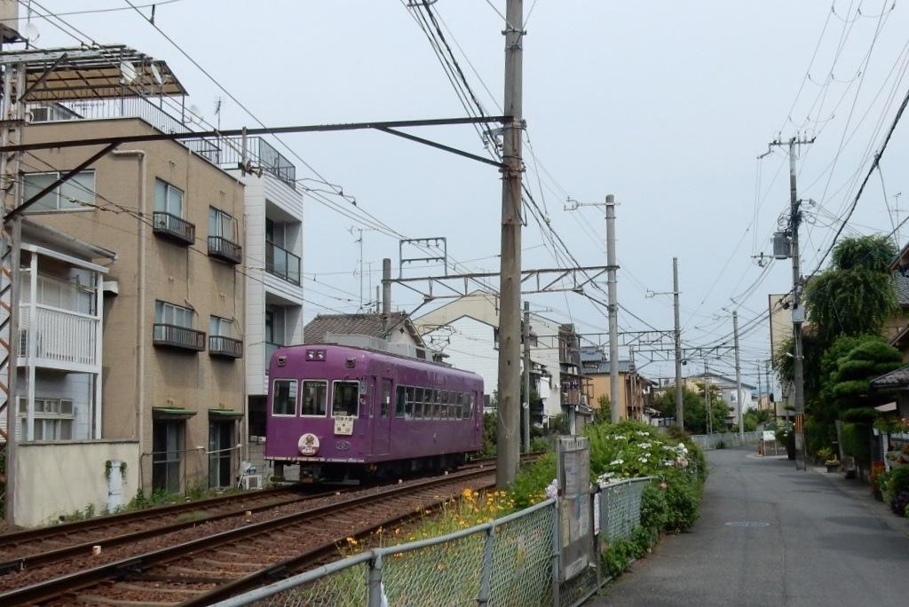 嵐電アジサイ 087