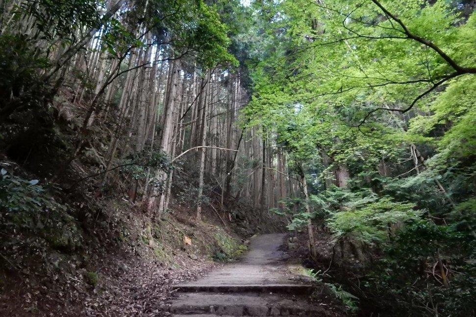 祇園祭愛宕山 134