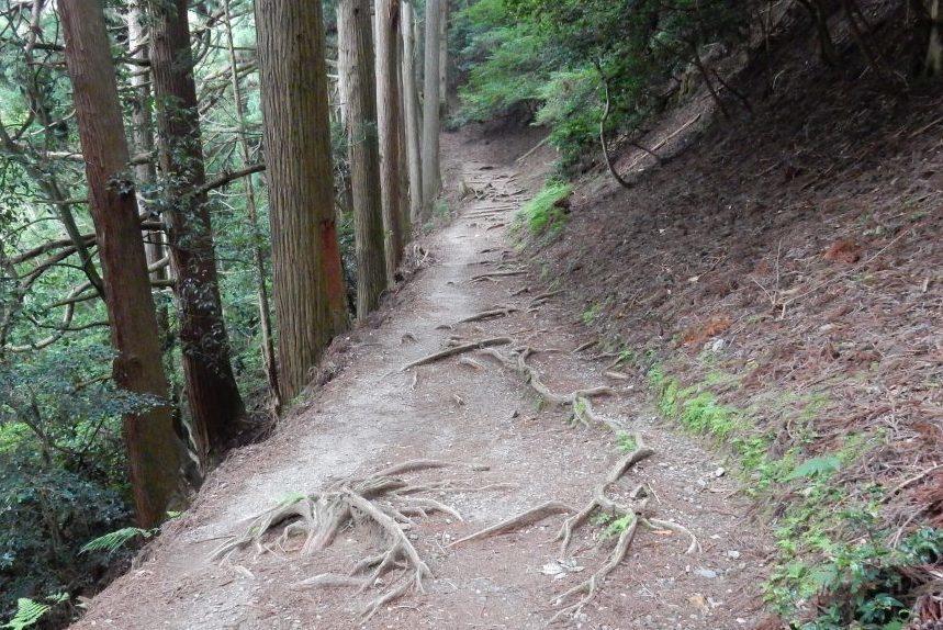 祇園祭愛宕山 156