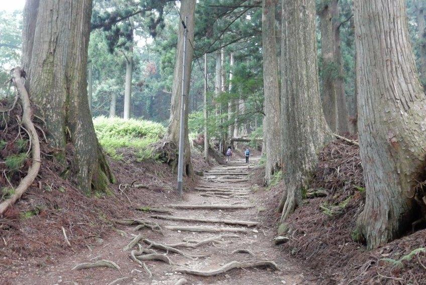 祇園祭愛宕山 174