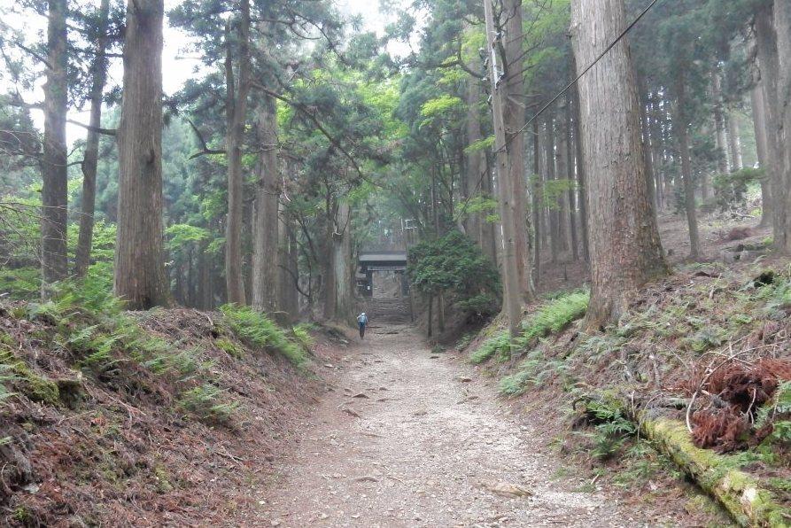 祇園祭愛宕山 175