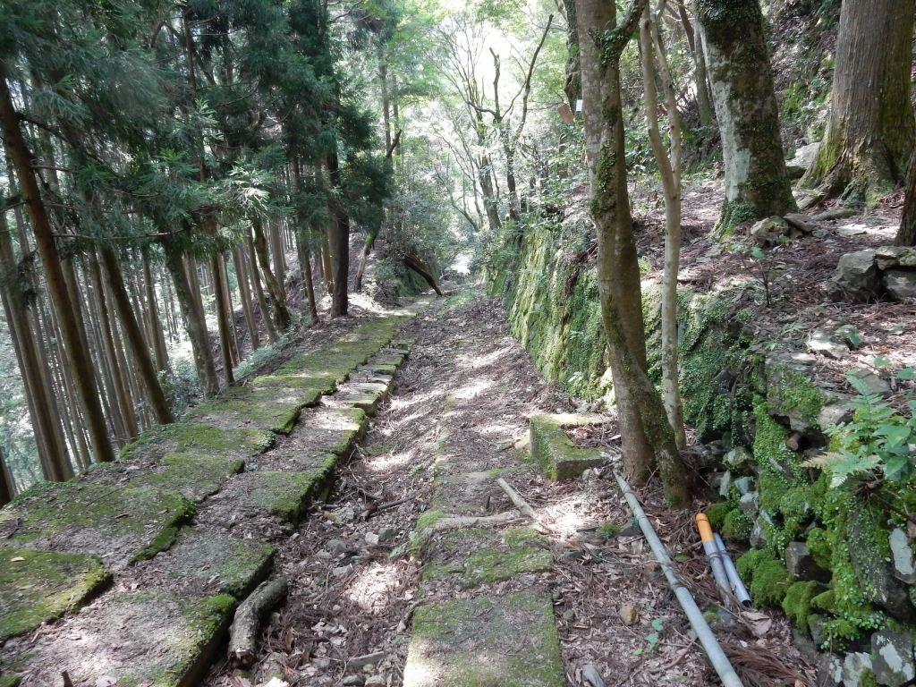 祇園祭愛宕山 249