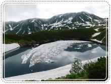 ライチョウ立山 (63)