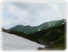 ライチョウ立山 (68)