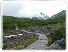 ライチョウ立山 (76)