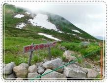 ライチョウ立山 (75)