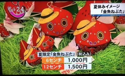 金魚ねぷたテレビ7