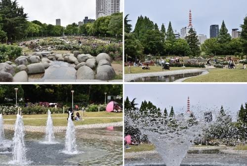 ウツボ公園バラ園