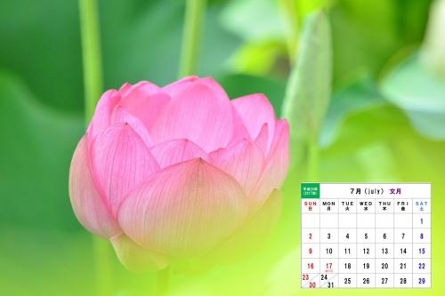 7月カレンダー1