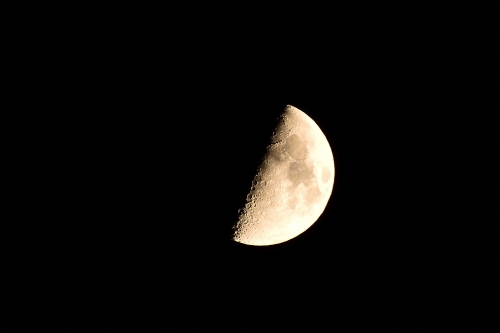 20170928上弦・月齢 7.9 (小潮)