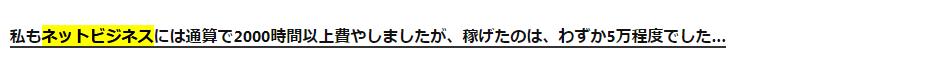 ネットビジネスで5万円しか稼げない