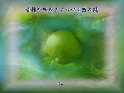 青柿や死ぬまでつづく恋の謎