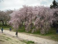 2017-05-05展勝地095