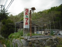 2017-05-12しろぷーうさぎ03