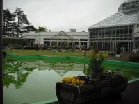 花と泉の公園2017-05-14ベゴニア館006