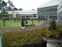 花と泉の公園2017-05-14ベゴニア館007